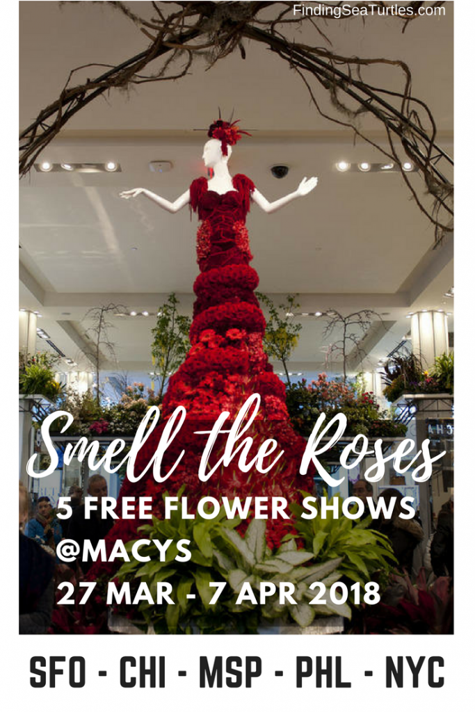 5 Free Flower Shows 2018 #macys #flowershow #freeevent