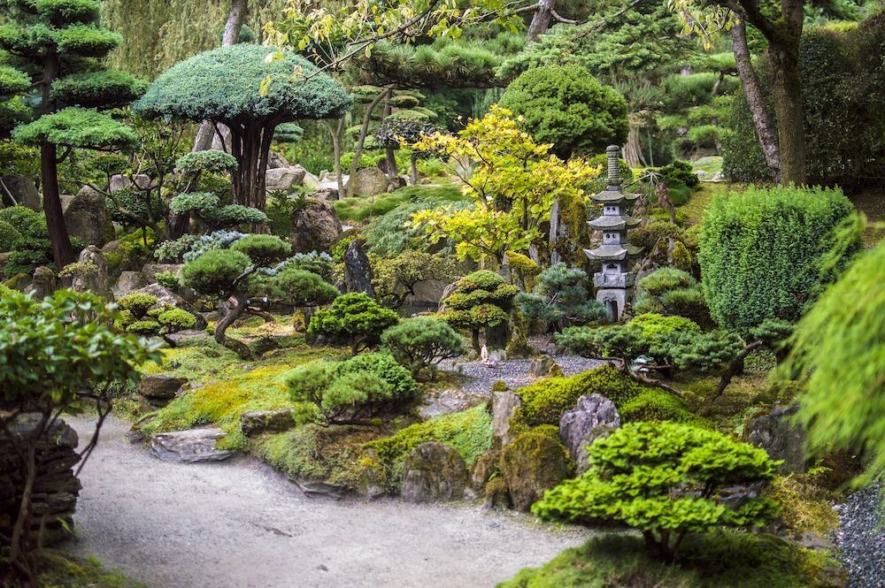 No Grass Yard Japanese Garden with Statuary Shrubs Trees and Moss #MinimizeLawn #ShrinkYourLawn #SmallerLawn #LessGrassLawn