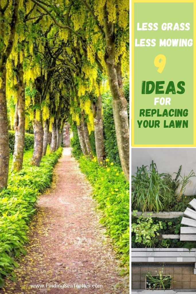 Less Grass Less Mowing 9 Ideas for Replacing Your Lawn #MinimizeLawn #ShrinkYourLawn #SmallerLawn #LessGrassLawn #DownsizeYourLawn