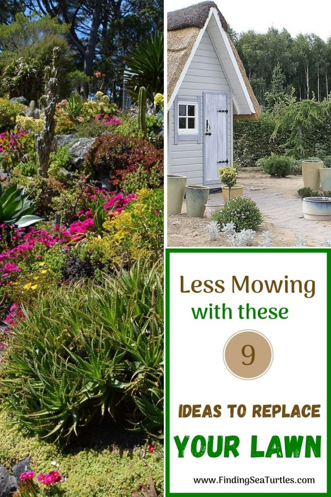 Less Mowing with these 9 Ideas to Replace Your Lawn