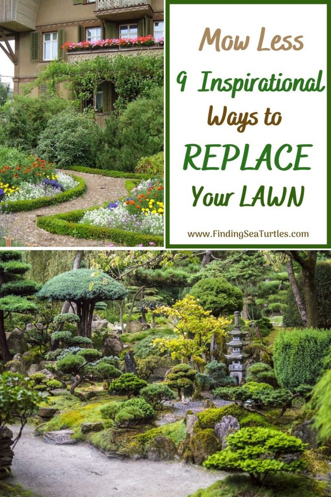 Mow Less 9 Inspirational Ways to Replace Your Lawn