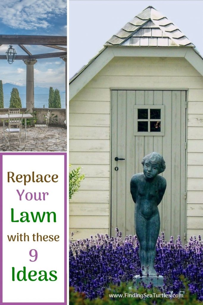 Replace Your Lawn with these 9 Ideas #MinimizeLawn #ShrinkYourLawn #SmallerLawn #LessGrassLawn #DownsizeYourLawn