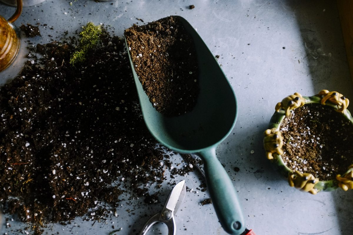 How to Save Money On Soil by Starting A Compost