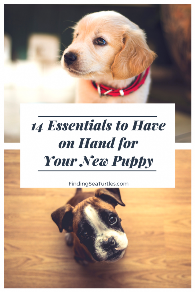 First Time Dog Owner: 14 Essentials #dog #dogcare #doglovers