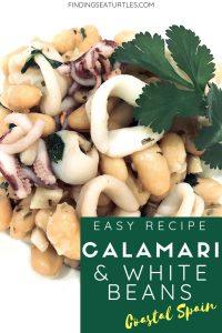 Quick and Easy Coastal Spanish Recipe - Calamari and White Beans #easyrecipes #coastalspain #calamari #squid #whitebeans #tapas