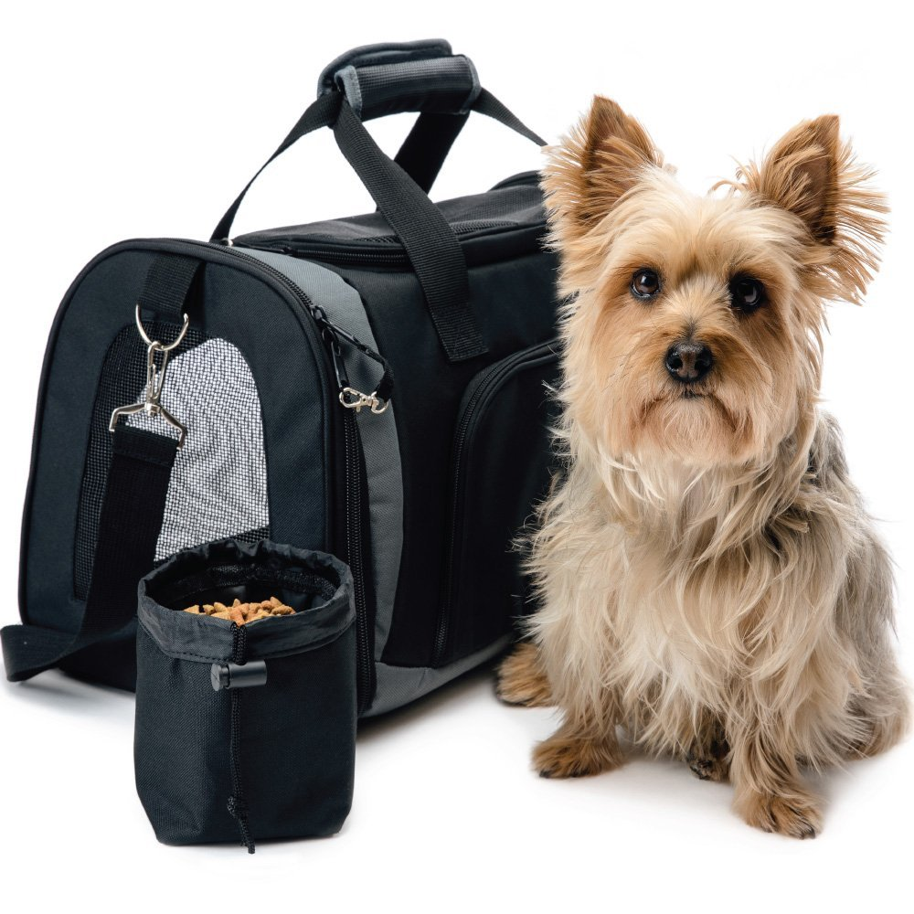 First Time Dog Owner Road Trip Tips - Gorilla Grip Pet Purse Carrier Bag #FirstTimeDogOwner #DogsTravel #DogRoadTrip #DogGorillaGrip #Dogs