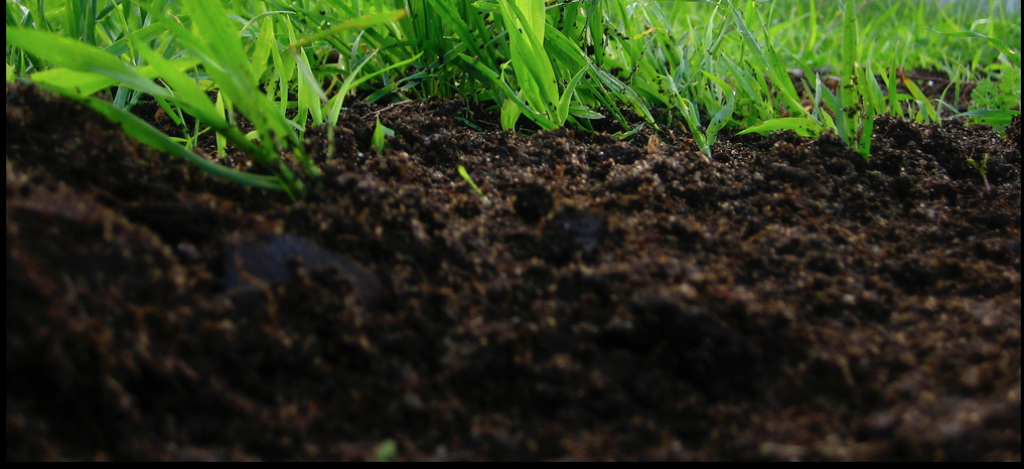 Low Performing Soil? Turn Your Soil into High Performing Soil #Organic #Compost #Garden #OrganicSoil #GardenSoil