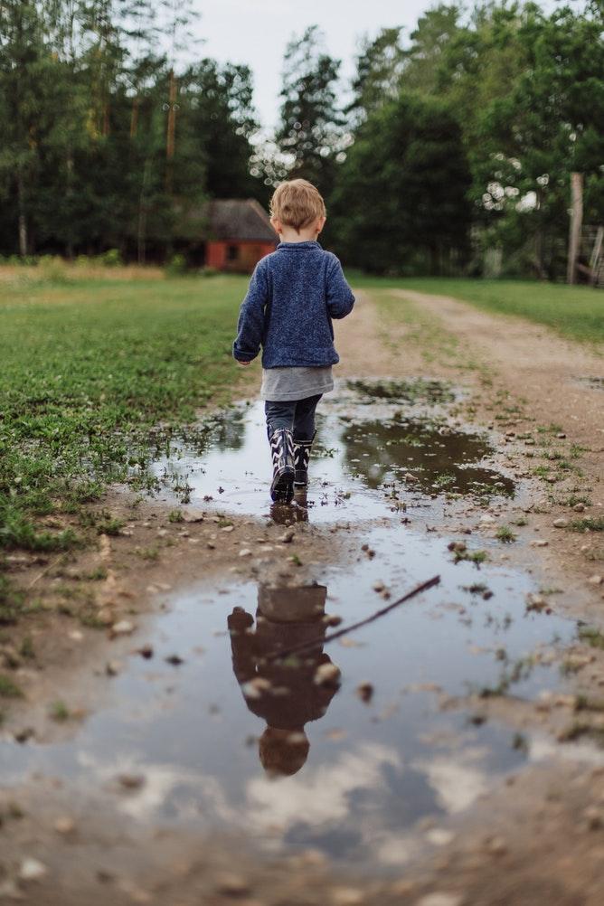 Lawn Drainage Problems? Amazing Gypsum Additive May Help Photo By Daiga Ellaby Unsplash #GreenGardening #LawnCare #LawnMaintenance #LawnDrainageProblems