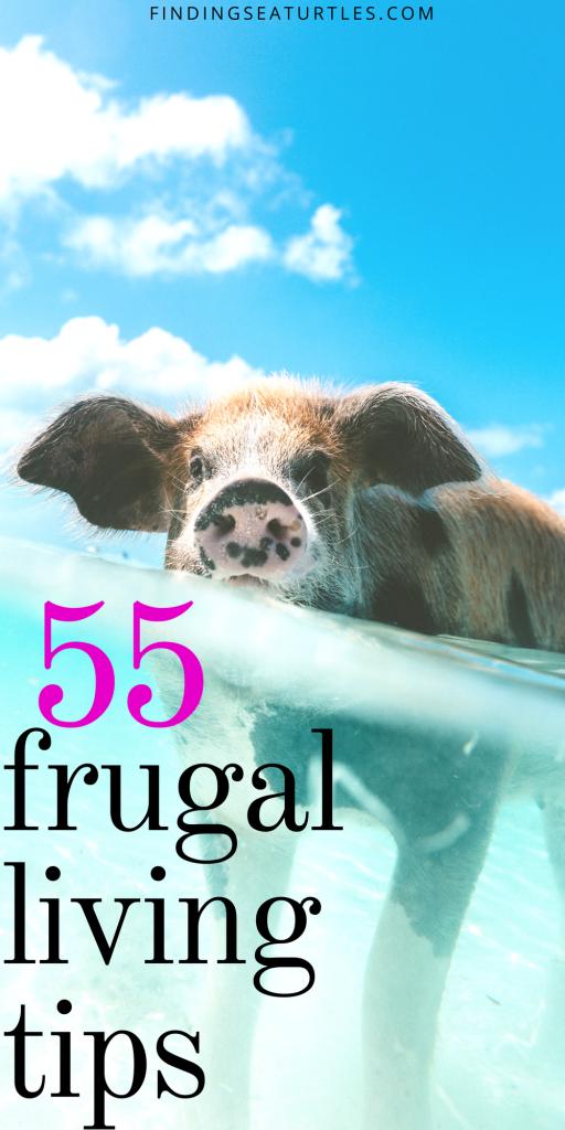 55 Frugal Living Tips #FrugalLiving #DIY #SaveMoney #LiveFrugally