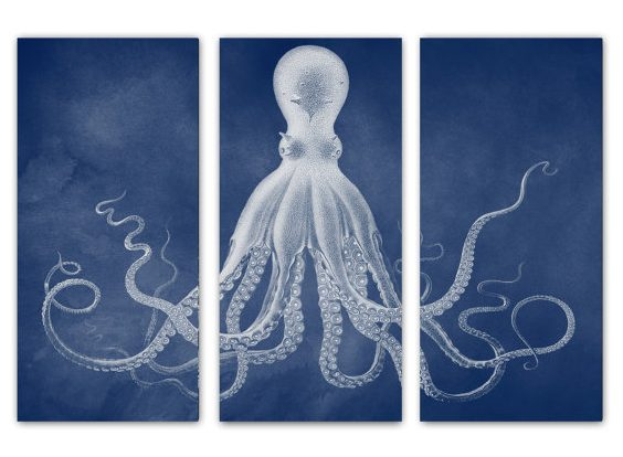 10 Cool Octopus Accessories for your Coastal Home #octopus #coastalhome #coastaldecor #sealife