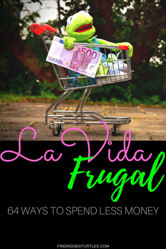 La Vida Frugal Money Saving Ideas #FrugalLiving #SavingMoney #Thrifty #FamilyFinance #DIY