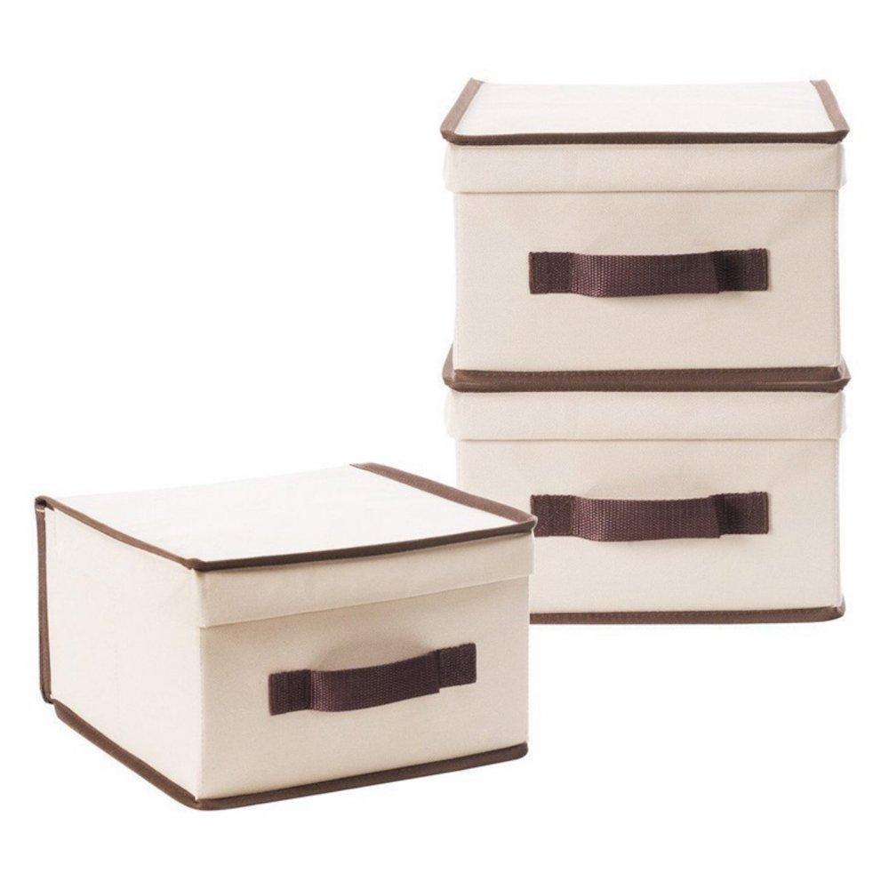 10 Massive Space Saving Closet Tips Closet Storage Boxes #Organize #Organization #OrganizedCloset #OrganizeClothes #Closet #ClosetStorage #Storage #SaveTime #SaveMoney