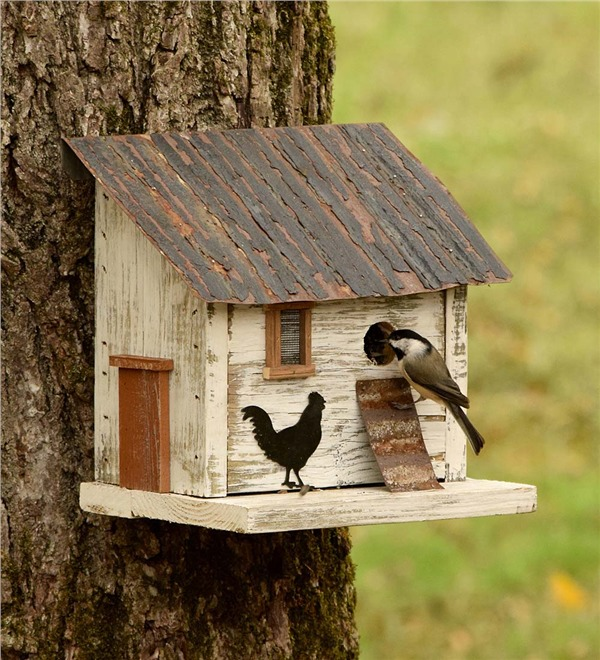 10 Blissful Birdhouses To Attract Birds That Serenade Chicken Coop Birdhouse #BlissfulBirdhouses #Birdhouses #Garden #Gardening #AttractsBirds #ChickenCoopBirdhouse