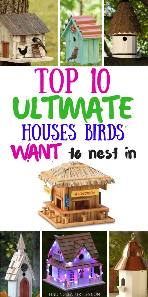 10 Blissful Birdhouses To Attract Birds That Serenade #Birdhouses #AttractBirds #Birds #Garden #Songbirds