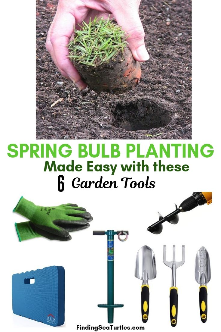 SPRING BULB PLANTING Made Easy With These 6 Garden Tools #PlantBulbs #Garden #Gardening #GardenTools #GardenBulbs #FallPlanting #PlantingTools #SpringBloomingFlowers#Landscape #PlantTulips #PlantDaffodils
