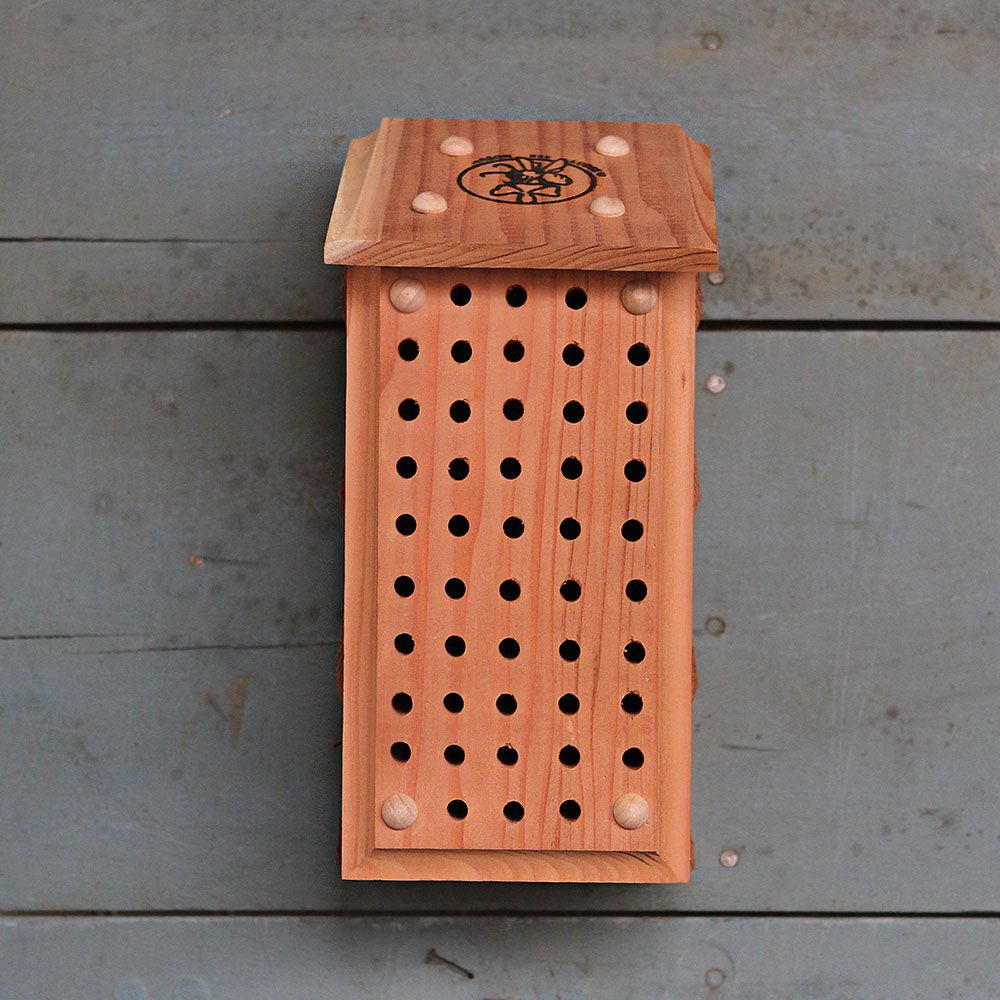 How to Build Bee Hotels for Solitary Bees Redwood Mason Bee Block #Wildlife #HabitatforWildlife #BeneficialWildlife #SaveTheBees #BeeFriendly #BeeHotels #HomeForBees #NativePlants #BeneficialPollinators