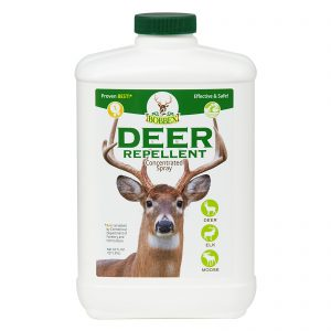 Keep Deer Out of Your Garden Now Because Winter is Coming! Bobbex Deer Repellent Concentrated Spray #DeerRepellent #Gardening #Garden #DeerRepellentSpray #Bobbex