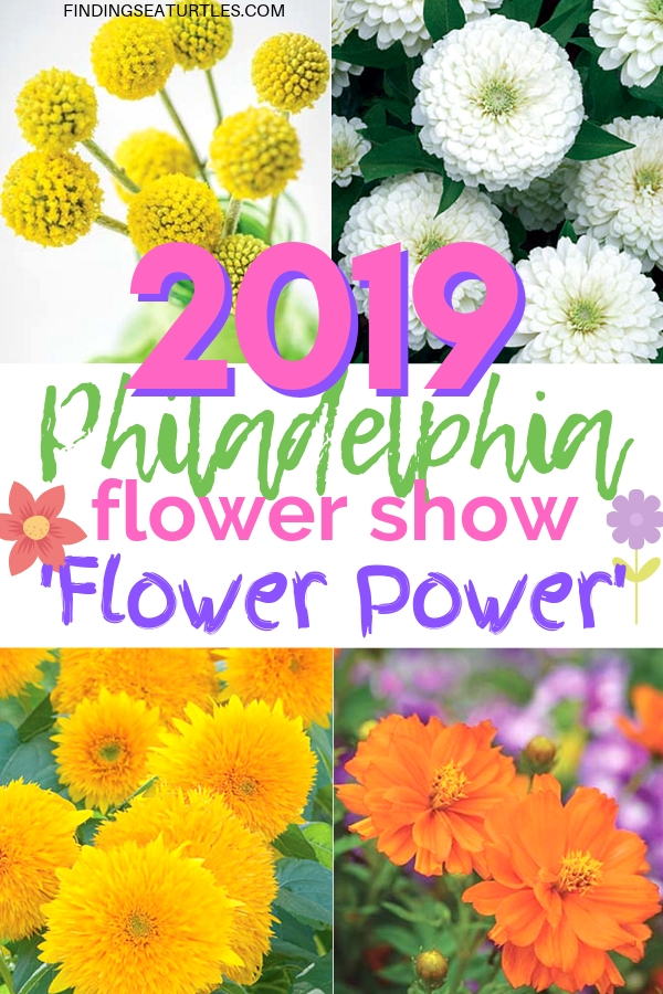 Philadelphia Flower Show 2019: Discover Flower Power Philadelphia Flower Show 2019 Flower Power #PHS # #PhiladelphiaFlowerShow #FlowerShow #Spring #SpringFlowers #Philadelphia #FlowerPower