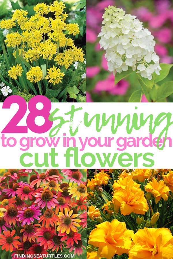 28 Stunning Cut Flowers To Grow in your garden #CutFlowers #Garden #Gardening #Spring #SpringGardening #CuttingGarden