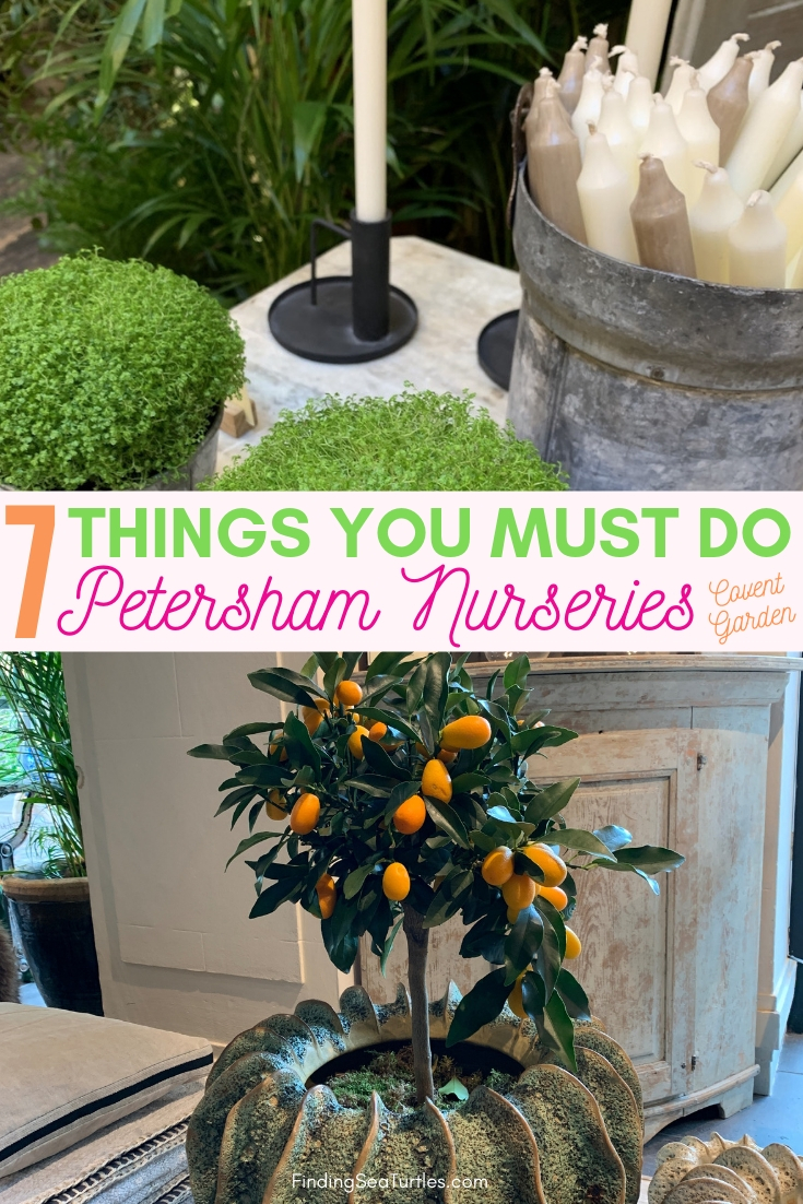 7 Thing You Must Do Petersham Nurseries Covent Garden #PetershamNurseries #Garden #GardenTools #GardenSupplies #Gardening #HomeDecor #GardenDecor #London #CoventGarden
