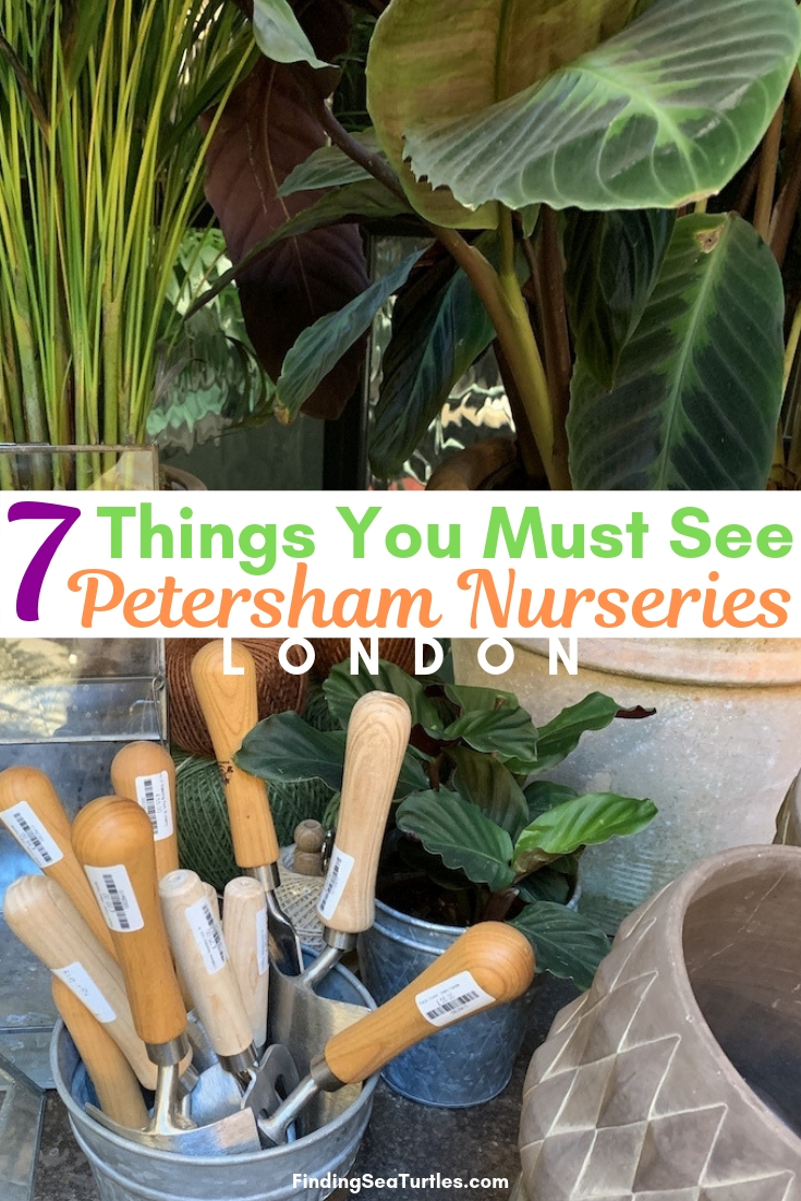 7 Things You Must See Petersham Nurseries London #PetershamNurseries #Garden #GardenTools #GardenSupplies #Gardening #HomeDecor #GardenDecor #London #CoventGarden