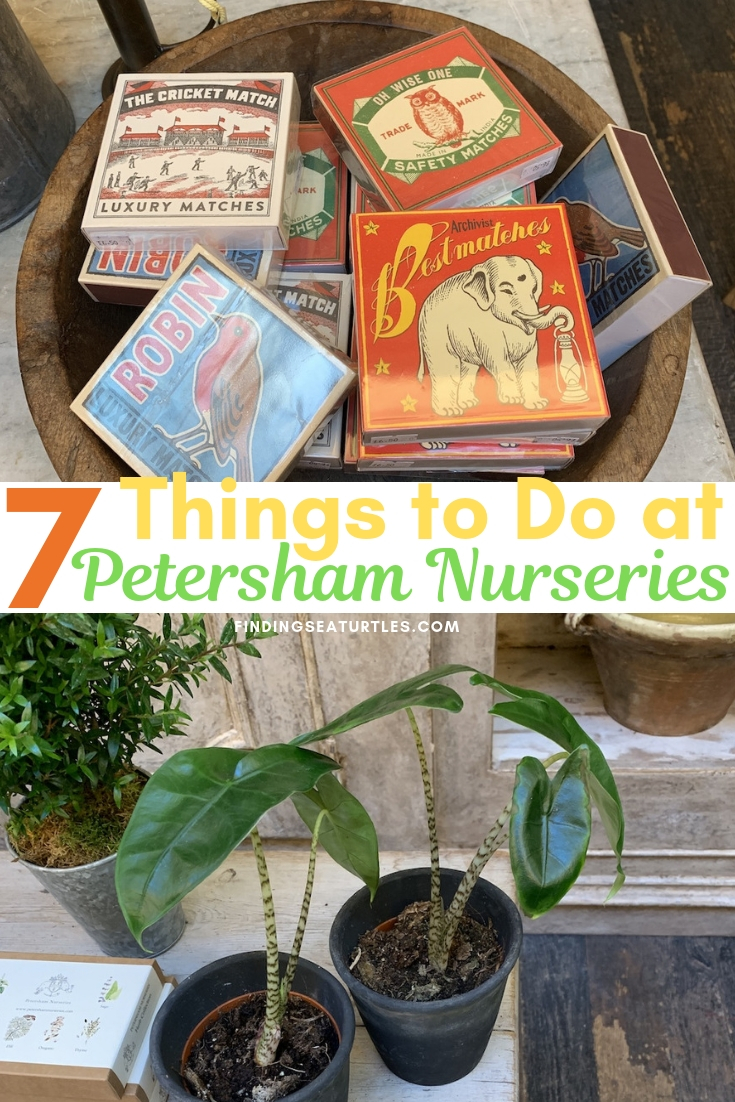 7 Things To Do At Petersham Nurseries