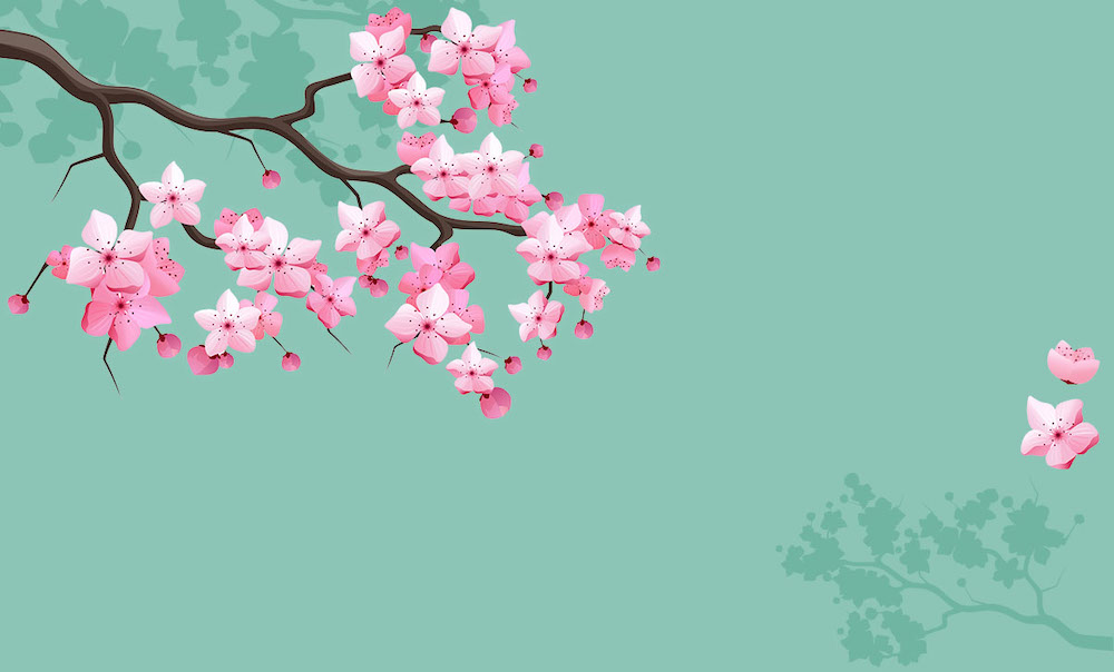 Visit the Spectacular National Cherry Blossom Festival 2019 in Washington DC Endow A Cherry Tree Campaign #CherryBlossomFestival #NationalCherryBlossom #CherryBlossom #SpringTime #SpringFlowers #WashingtonDC #Festival