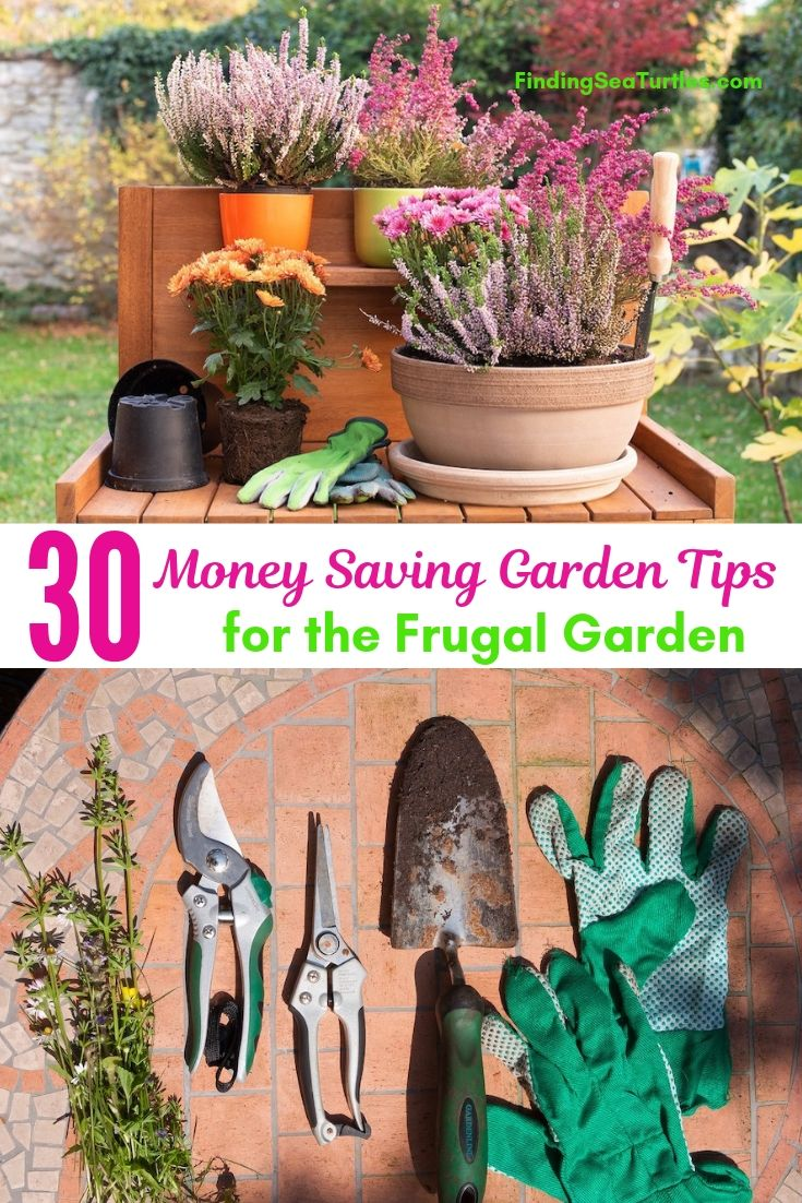 30 Money Saving Garden Tips For The Frugal Garden #SaveMoney #MoneySavingTips #SaveTime #GardenSavings #Garden #Gardening #Landscape #BudgetFriendly #FrugalLiving #FrugalGardening #ThriftyGardening