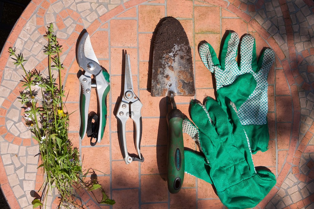 30 Money Saving Garden Tips for the Frugal Garden Garden Tools Gloves Scissors #SaveMoney #MoneySavingTips #SaveTime #GardenSavings #Garden #Gardening #Landscape #BudgetFriendly #FrugalLiving #FrugalGardening #ThriftyGardening