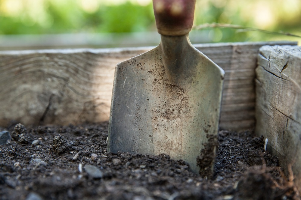 30 Money Saving Garden Tips for the Frugal Garden Garden Trowel #SaveMoney #MoneySavingTips #SaveTime #GardenSavings #Garden #Gardening #Landscape #BudgetFriendly #FrugalLiving #FrugalGardening #ThriftyGardening