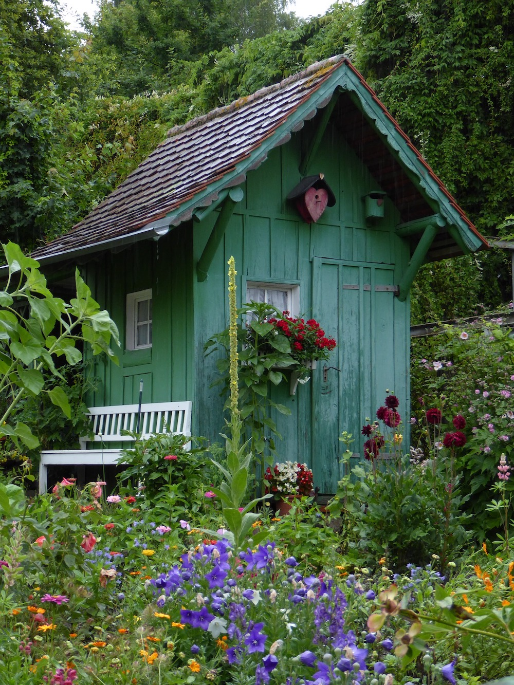 30 Money Saving Garden Tips for the Frugal Garden Green Garden Shed #SaveMoney #MoneySavingTips #SaveTime #GardenSavings #Garden #Gardening #Landscape #BudgetFriendly #FrugalLiving #FrugalGardening #ThriftyGardening