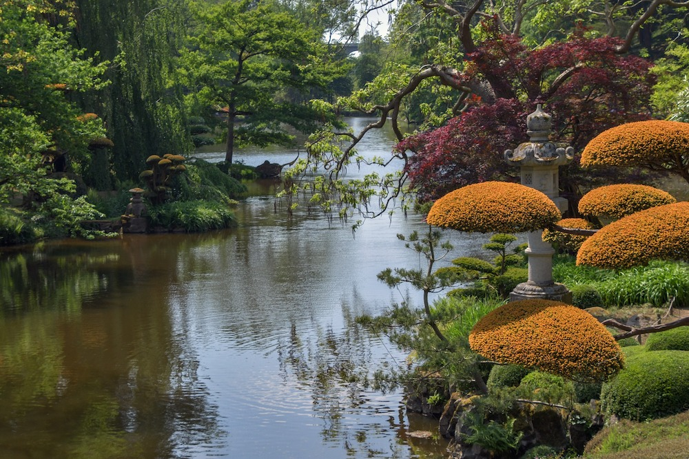 30 Money Saving Garden Tips for the Frugal Garden Japanese Garden Scape #SaveMoney #MoneySavingTips #SaveTime #GardenSavings #Garden #Gardening #Landscape #BudgetFriendly #FrugalLiving #FrugalGardening #ThriftyGardening
