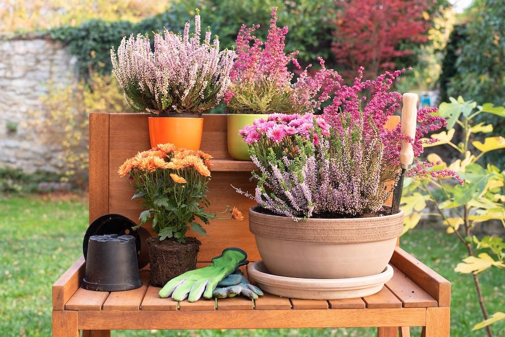 30 Money Saving Garden Tips for the Frugal Garden Potting Table #SaveMoney #MoneySavingTips #SaveTime #GardenSavings #Garden #Gardening #Landscape #BudgetFriendly #FrugalLiving #FrugalGardening #ThriftyGardening