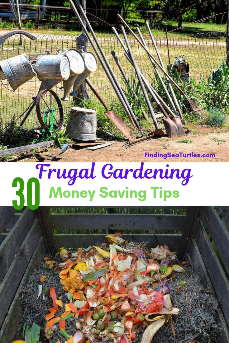 Frugal Gardening 30 Money Saving Tips #SaveMoney #MoneySavingTips #SaveTime #GardenSavings #Garden #Gardening #Landscape #BudgetFriendly #FrugalLiving #FrugalGardening #ThriftyGardening