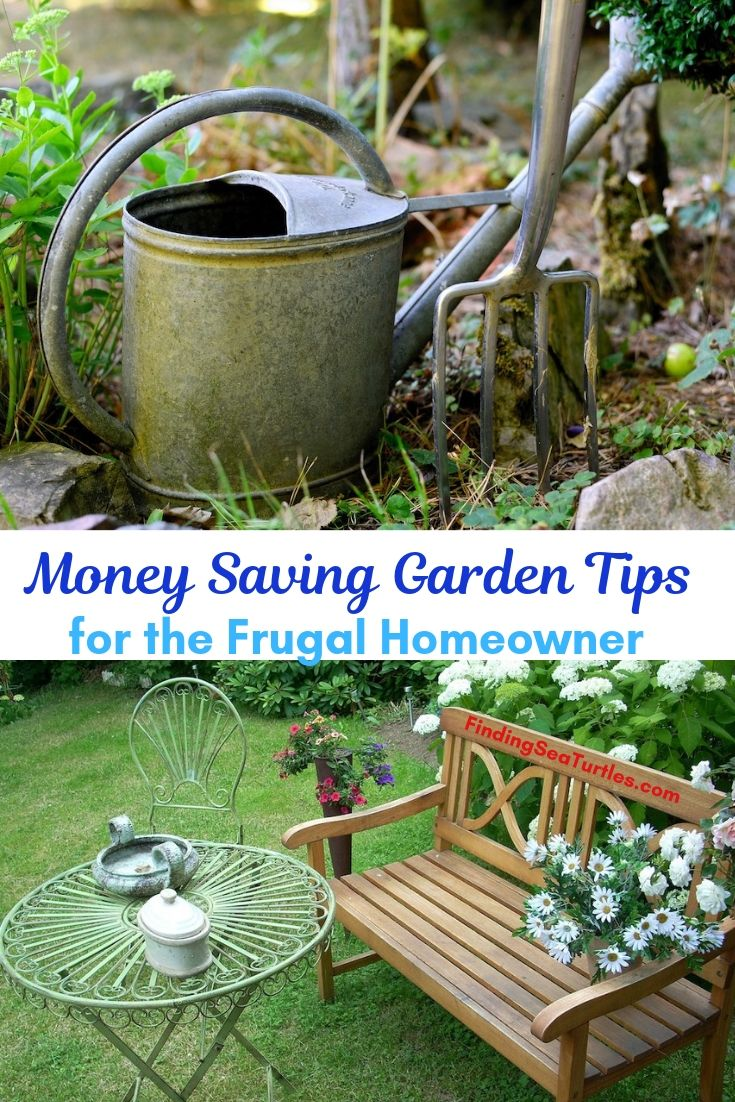 Money Saving Garden Tips For The Frugal Homeowner #SaveMoney #MoneySavingTips #SaveTime #GardenSavings #Garden #Gardening #Landscape #BudgetFriendly #FrugalLiving #FrugalGardening #ThriftyGardening