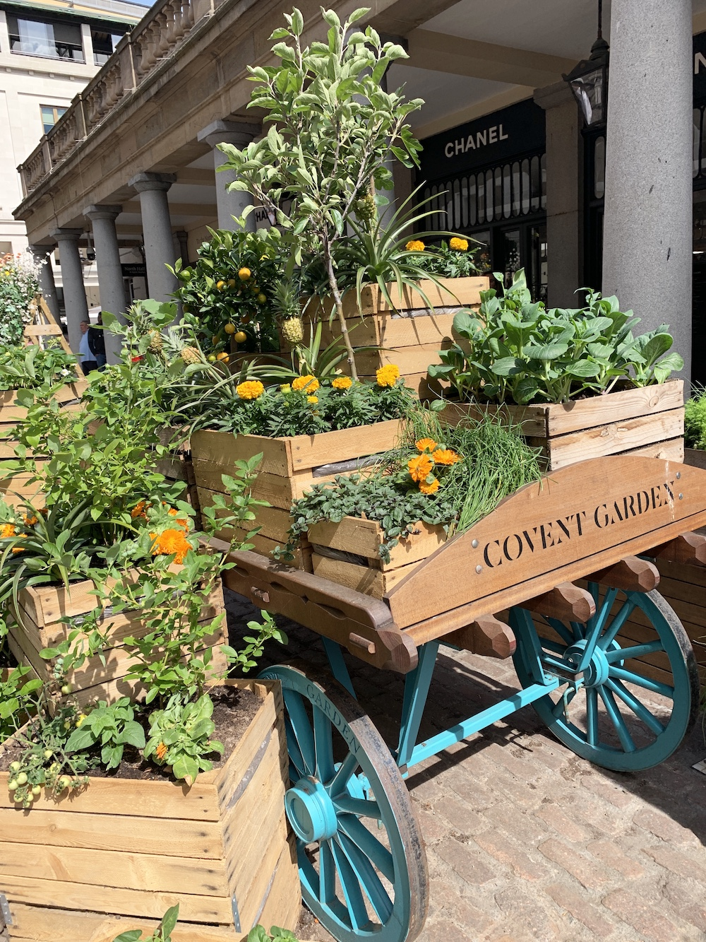Crate Gardening for Small Spaces Covent Garden Wagon With Crates #Garden #Gardening #SmallSpace #SmallSpaceGardening #ContainerGardening #VegetableGarden #HerbGarden #PorchGarden #PatioGarden