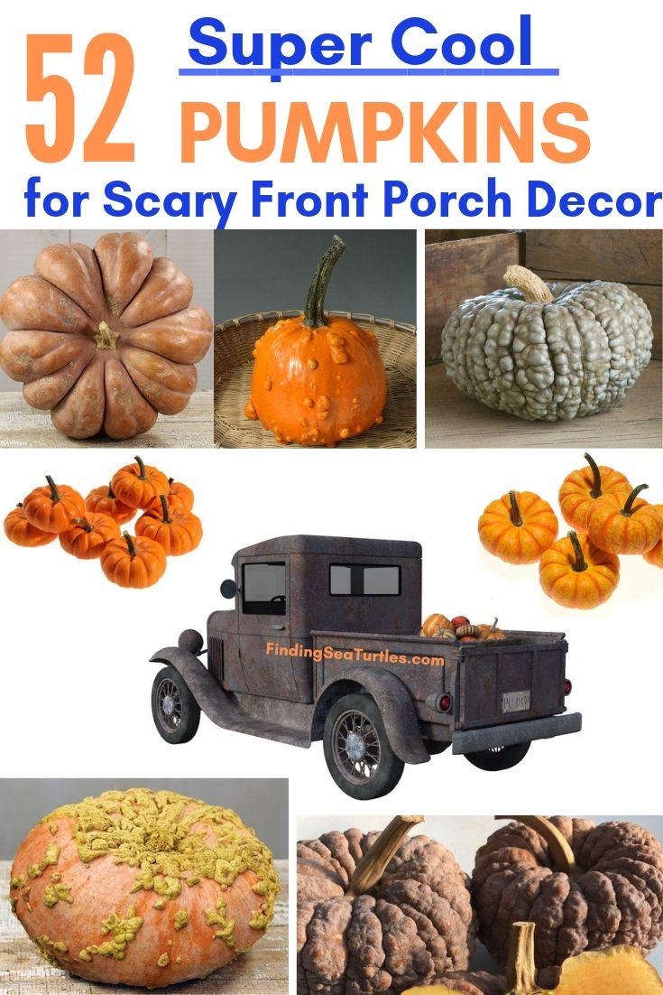 52 Super Cool PUMPKINS For Scary Front Porch Decor #Pumpkin #Pumpkins #GrowPumpkins #Garden #Gardening #FallDecor #FallGarden #FallSquash #AutumnDecor #FallHarvest #Halloween