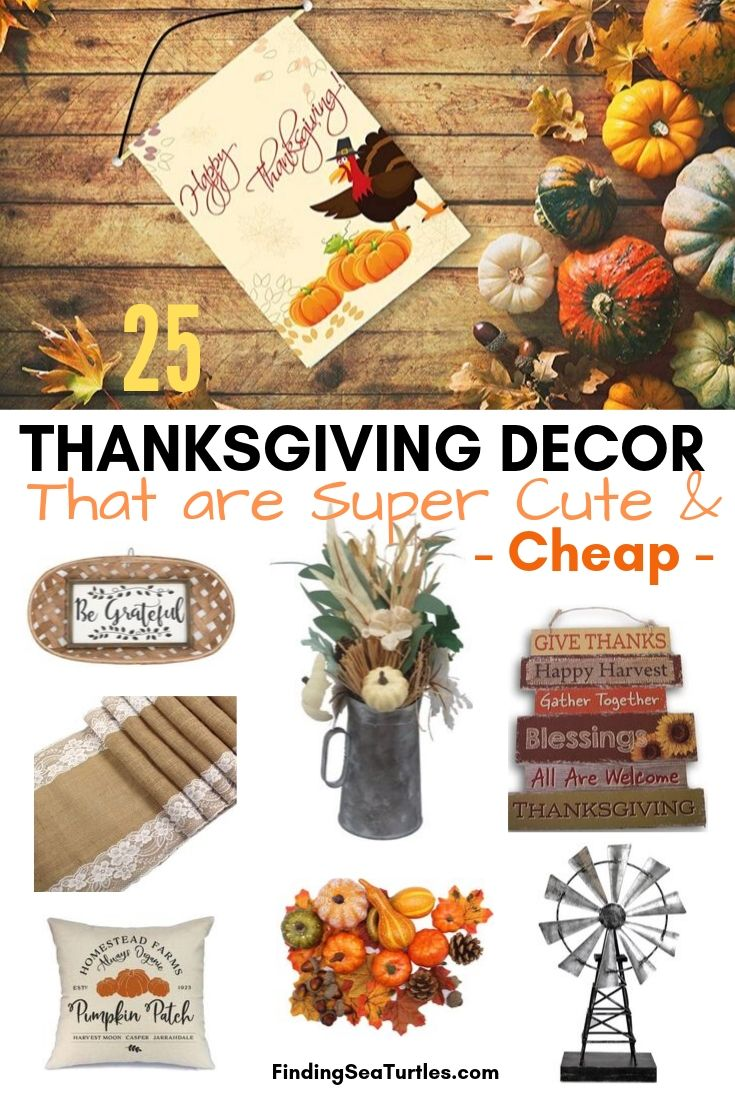 25 THANKSGIVING DECOR that are Super Cute Cheap #Decor #ThanksgivingDecor #AffordableDecor #AffordableFallDecor #CheapThanksgivingDecor #QuickAndEasyDecor #BudgetFriendlyDecor