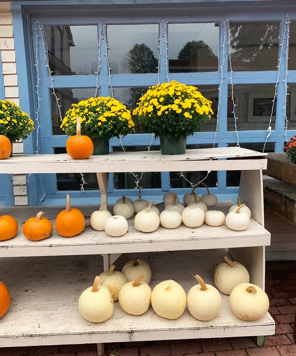 Autumn Decor Ideas Comstock Ferre and Co Old Wethersfield #DIY #DIYDecor #ThanksgivingCenterpiece #FallCenterpiece #FallDecor #Thanksgiving #ThanksgivingTable #Centerpiece #AutumnCenterpiece
