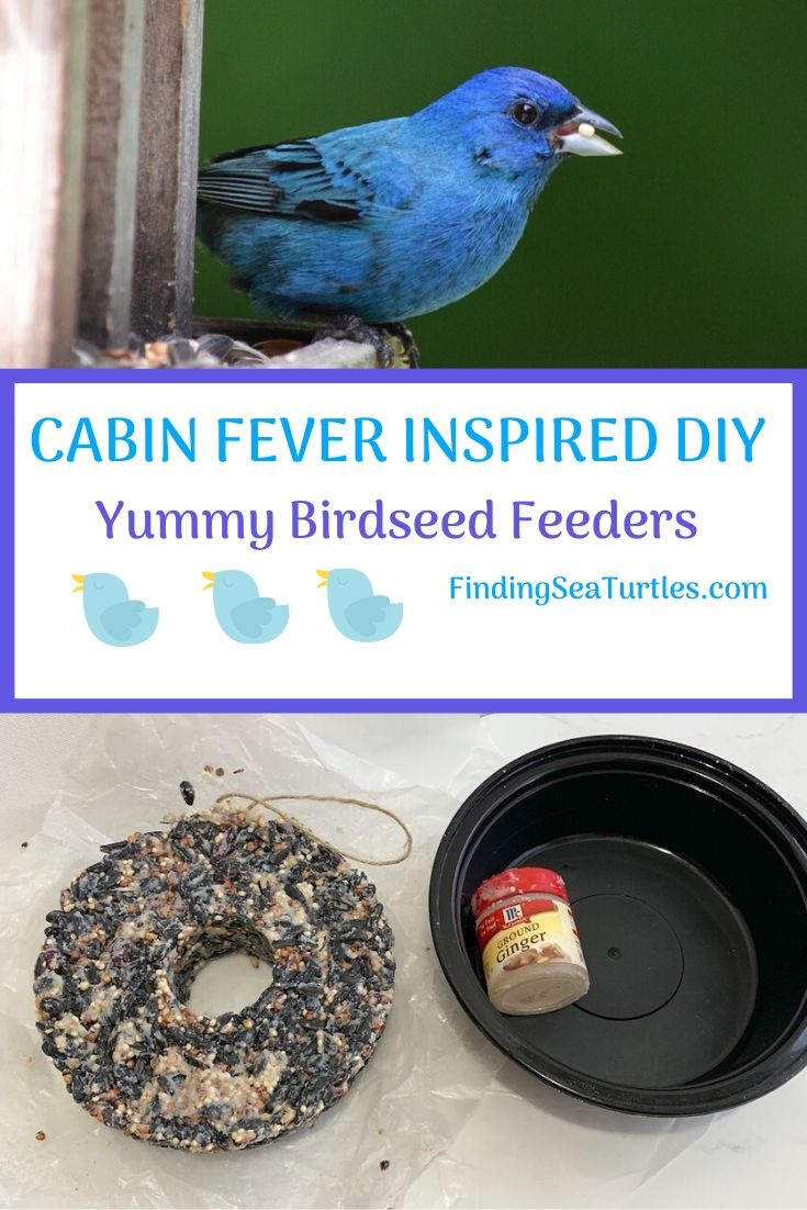 Cabin Fever Inspired DIY Yummy Birdseed Feeders #FeedTheBirds #BirdFood #FeedWildBirds #Gardening #Wildbirds #DIY #DIYBirdFood #BirdCakes