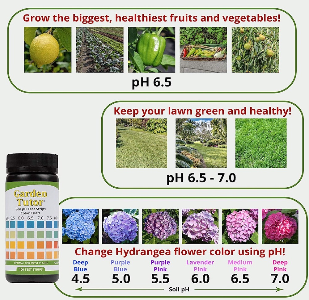 Garden Tutor Test Strips with Hydrangea Chart #Perennials #AcidLovingPerennials #AcidLovingPlants #Gardening #AcidicSoil