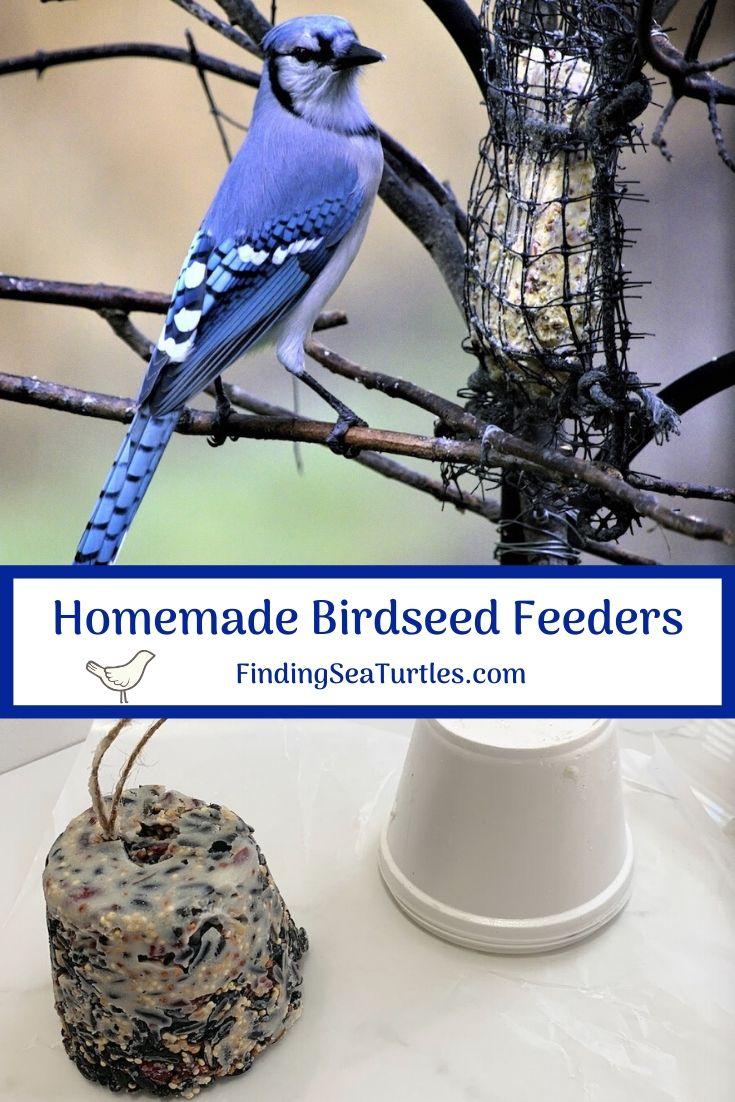 Homemade Birdseed Feeders #FeedTheBirds #BirdFood #FeedWildBirds #Gardening #Wildbirds #DIY #DIYBirdFood #BirdCakes