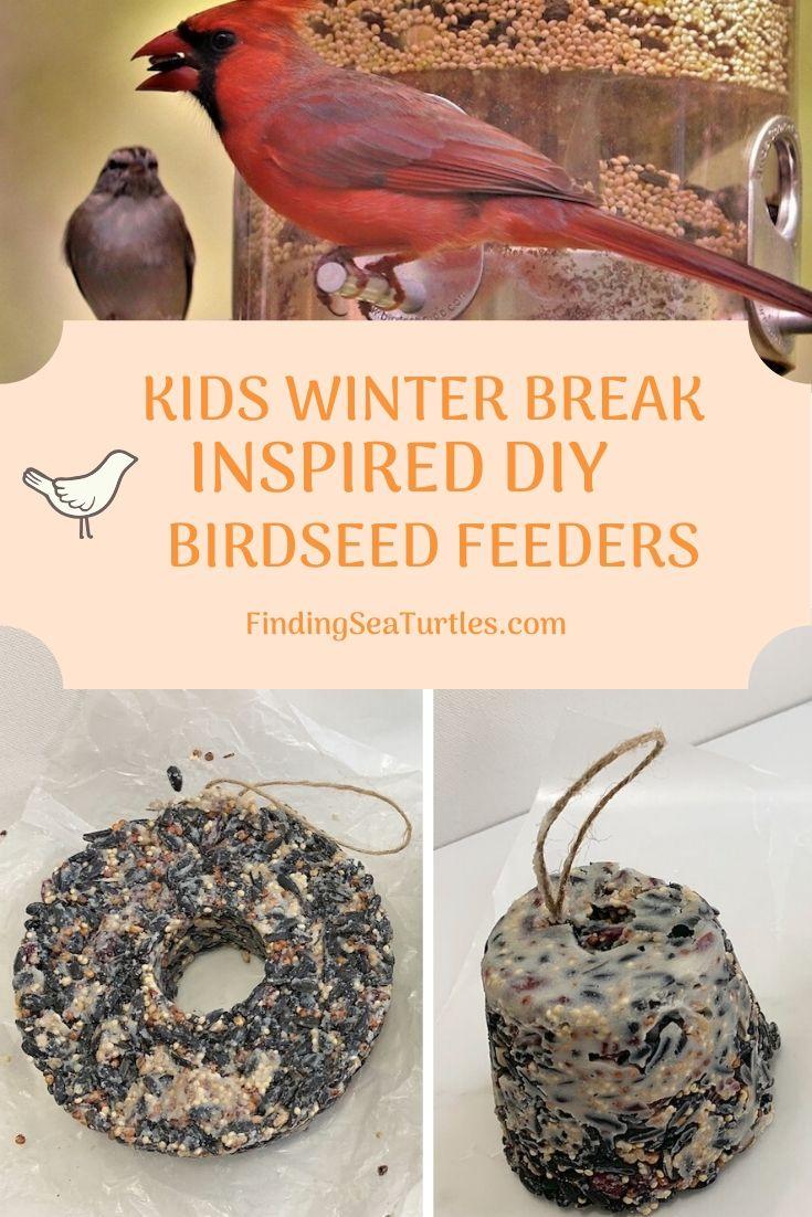 Kids Winter Break Inspired DIY Birdseed Feeders #FeedTheBirds #BirdFood #FeedWildBirds #Gardening #Wildbirds #DIY #DIYBirdFood #BirdCakes