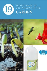 19 Frugal Ways to Use Vinegar in the Garden #VinegarUses #Gardening #AllNaturalCleaning #SaveMoney #SaveTime #BudgetFriendly #NonToxic #EnvironmentallyFriendly #PatioCleaning #VinegarCleaning