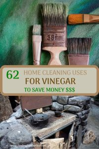 62 Home Cleaning Uses for VINEGAR TO Save Money $$$ #CleanHome #Cleaning #HouseCleaning #HouseKeeping #Vinegar #CleaningwithVinegar #SaveMoney #SaveTime #BudgetFriendly #NonToxic