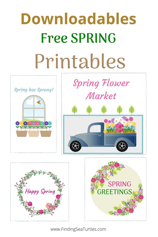 Downloadables Free Spring Printables #HelloSpring #HelloSpring #HelloSpringPrintables #HelloSpringWallArt #DIY #WallArt #DIYDecor