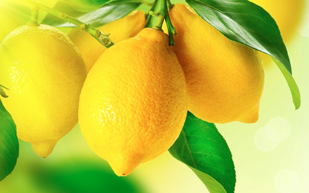 Homemade Cleaners for the Frugal Home Lemon Essential Oil #CleanHome #HomemadeCleaners #HouseCleaning #HouseKeeping #DIYCleaning #CleanwithVinegar #SaveMoney #SaveTime #BudgetFriendly #NonToxic