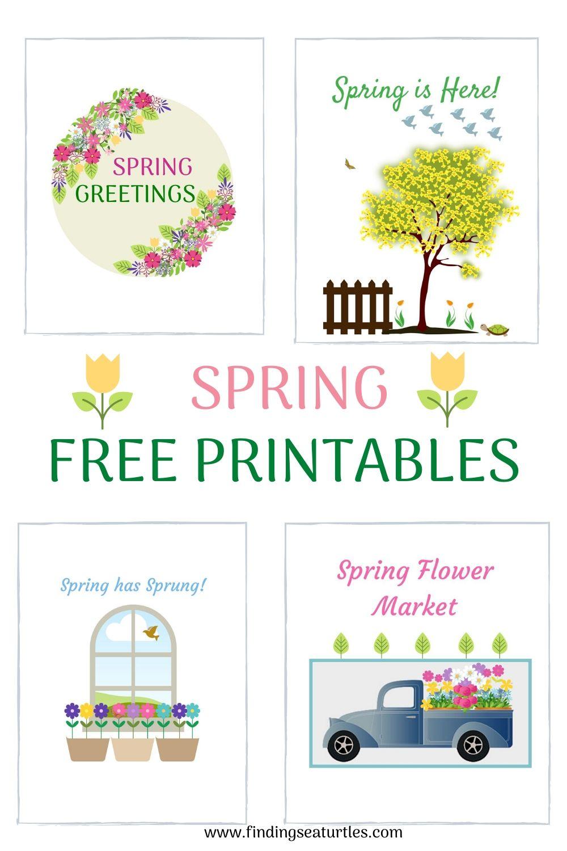 SPRING Free Printables #HelloSpring #HelloSpring #HelloSpringPrintables #HelloSpringWallArt #DIY #WallArt #DIYDecor