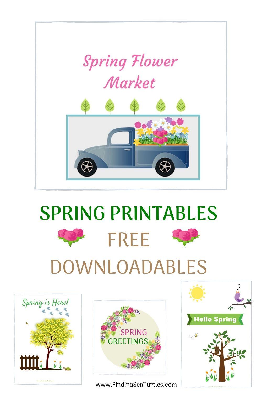 Spring Printables Free Downloadables #HelloSpring #HelloSpring #HelloSpringPrintables #HelloSpringWallArt #DIY #WallArt #DIYDecor
