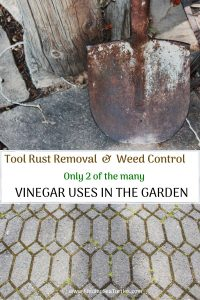 Tool Rust Removal Weed Control 2 of Vinegar Uses in the Garden #VinegarUses #Gardening #AllNaturalCleaning #SaveMoney #SaveTime #BudgetFriendly #NonToxic #EnvironmentallyFriendly #PatioCleaning #VinegarCleaning